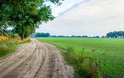 Curved sandy path with wheel tracks in a rural landscape Royalty Free Stock Photos