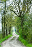Curved sandy road in an alley Royalty Free Stock Photography