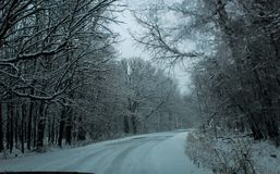 Curved snow covered road through trees royalty free stock photos