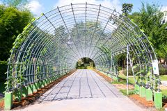 Curved steel pergola in park, Metal arbor background stock images