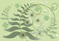 Curved stems with leaves and flowers on a green ba Royalty Free Stock Photography