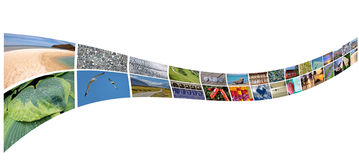 Curved stream of photos Stock Photos