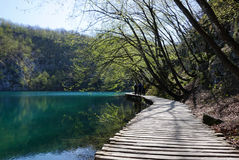 Curved timber walkway in Plitvice national park Stock Image