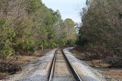 Free Curved Train Tracks Railroad Rail Crossing Woods Forest Stock Photo - 173510410