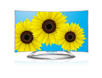 Curved tv Flowers Stock Photo