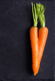 Curved twisted roots of carrot Stock Photo