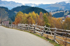 Curved Way Wooden Fence Stock Photo