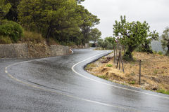 Curved wet asphalt road in a rain Royalty Free Stock Photos