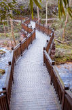 Curved Wood path Royalty Free Stock Photography