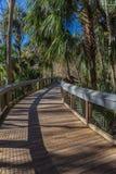 Florida Tropical Boardwalk stock image