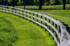 Curved Wooden Fence. Curved, wooden fence in grassy field with trees in background stock photos