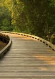 Curved Wooden Path Stock Images