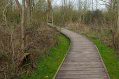 Curved wooden path between bushes Stock Photo