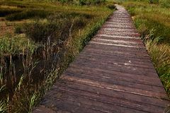 Curved wooden plank raised pathway above salty marsh in Nin, Croatia Stock Photos