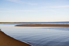 Curves of coastline in summer morning Royalty Free Stock Image