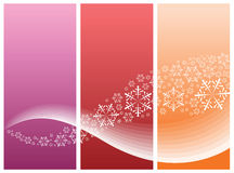 Curves and snowflakes. Abstract curves with snowflakes (three colors Royalty Free Stock Image