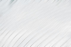 Curves of white and gray lines Royalty Free Stock Photos