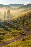 Curvi la strada alla foresta della montagna in nebbia all'alba Fotografia Stock