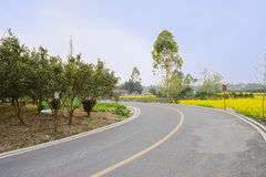 Curving asphalt countryroad in flowering spring afternoon Royalty Free Stock Photography