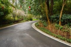 Curving asphalt road in verdant plants of spring. Chengdu,China stock images