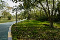 Curving tarred path in plants and trees of sunny winter afternoon. Curving asphalted path in plants and trees of sunny winter afternoon,Chengdu,China stock images