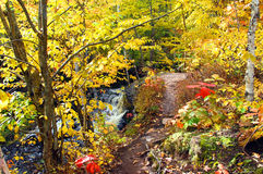 Curving Autumn Trail Royalty Free Stock Photos