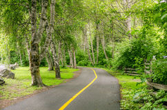 Curving Bicycle Path Stock Photography