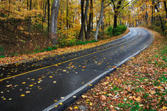 Park Road In Autumn Stock Photo