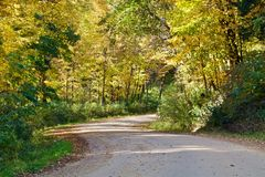 Curving Forest Road. Curving Country Gravel Road Landscape royalty free stock photo