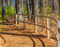 Curving Fence on Winding Forest Path stock photo
