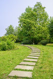 Curving flagstone path on  lawn of sunny summer Stock Images