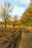 Curving footpath in autumnal park along a lake Royalty Free Stock Photo