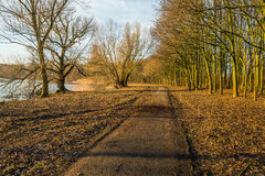 Curving footpath in autumnal park along the water of a lake Royalty Free Stock Photography