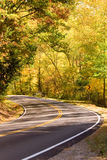 Curving highway through forest. Curving highway receding through autumnal forest Royalty Free Stock Photo