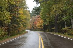 Curving road in northern Minnesota with trees in autumn color on royalty free stock photography