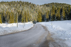 Curving Mountain Road to a Forest Royalty Free Stock Images