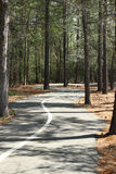 Curving path Royalty Free Stock Photo