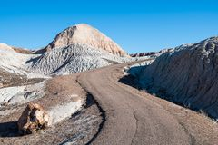 A curving path winds through a colorful, surreal desert landscape and passes by a petrified wood log in Petrified Forest National stock photo