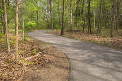 Curving Path in Woods Royalty Free Stock Images