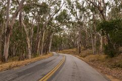 Curving road Royalty Free Stock Image