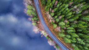 Curving road along beautiful lake and fir forest. Frozen lake surface. View from above.  stock photo