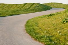 Road in Golf course royalty free stock photo