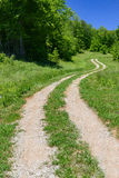 A curving road leads the eye into the distance on a vibrant spring mornin. G Stock Photography