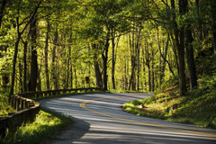 Curving road Royalty Free Stock Photos