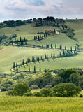 Curving road in Tuscany Stock Photos