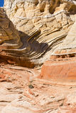 Curving Rock Strata at White Pocket Stock Images