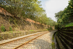 Curving rusted railroad in verdant plants on sunny day Royalty Free Stock Photos