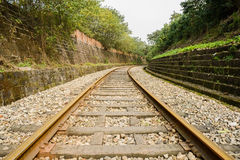Curving rusted railway in plants at noon Royalty Free Stock Image