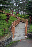 Curving Steps. Romantic garden stairway of bamboo wood railings and concrete steps leading to a pine tree populated hill.  This photo is taken in the Manor Royalty Free Stock Images