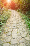 Curving stone pavement footpath Stock Photo